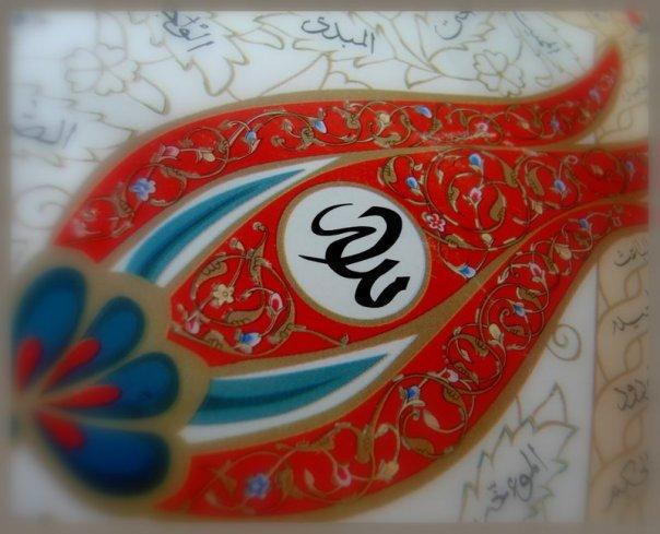 Image result for sufi rose
